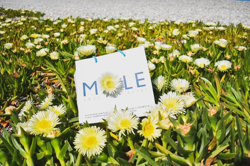 Mole in flowers